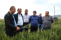 Arayik Haroutyunyan became acquainted with the process of large-scale economic projects in border villages