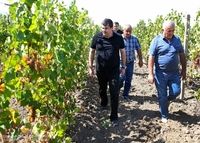 A large-scale program for the development of horticulture will be launched in Akna district: President Harutyunyan paid a working visit