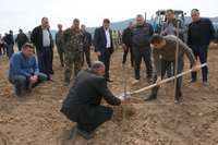 Arayik Harutyunyan took part in the start of planting a new garden in Nakhichevanik